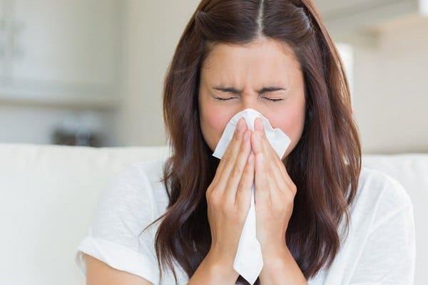 Dùng tinh dầu tràm phòng ngừa cảm cúm